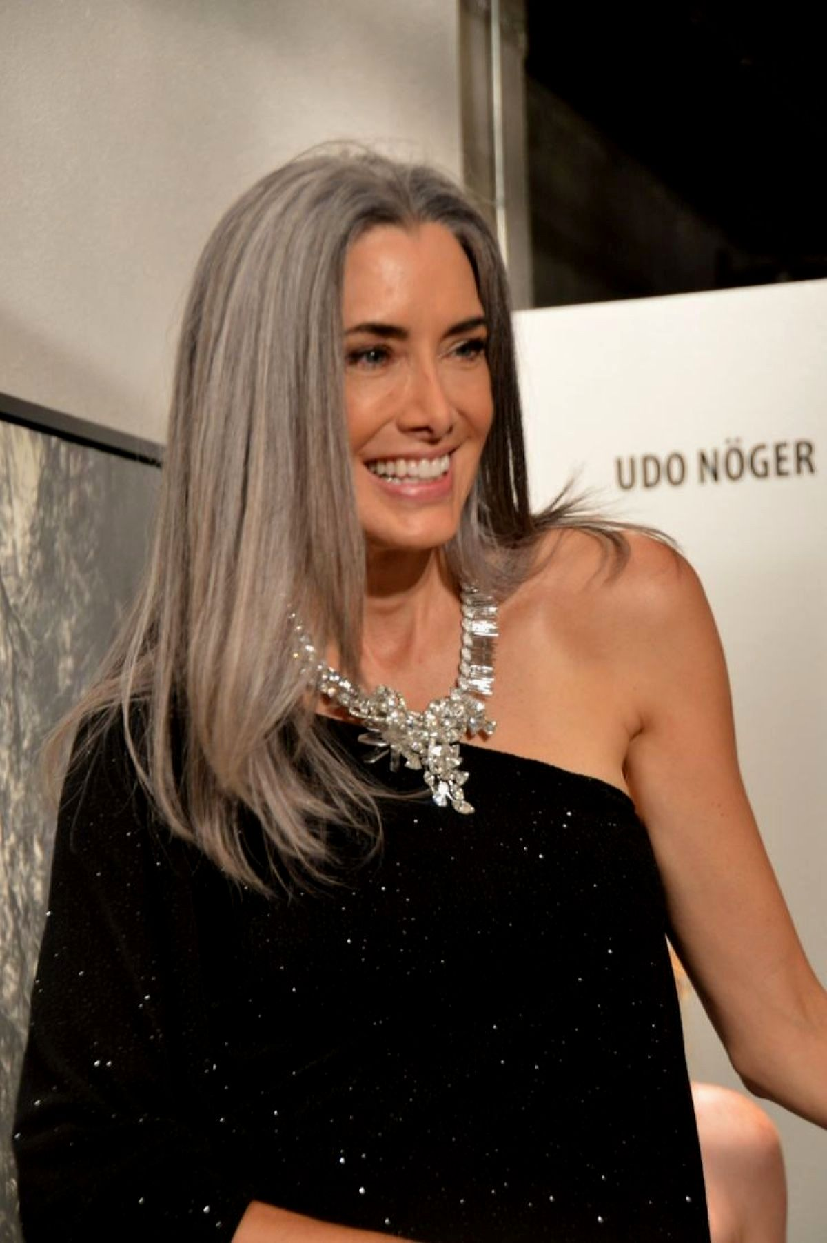 fantastic hairstyles gray hair gallery-finest hairstyles Gray Hair Picture