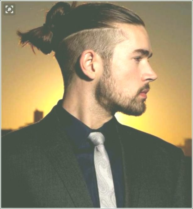Modern Men Hairstyles Long Hair Collection - Unique Men Hairstyles Long Hair Model