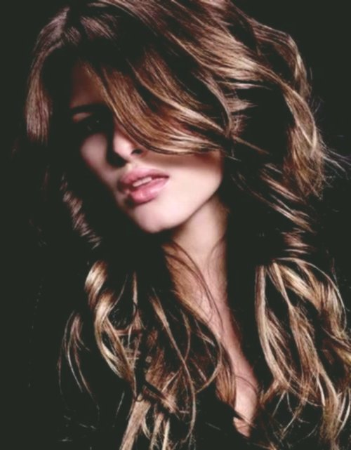 amazingly awesome dark hair lighter color image-Incredible Dark Hair Bright Coloring Models
