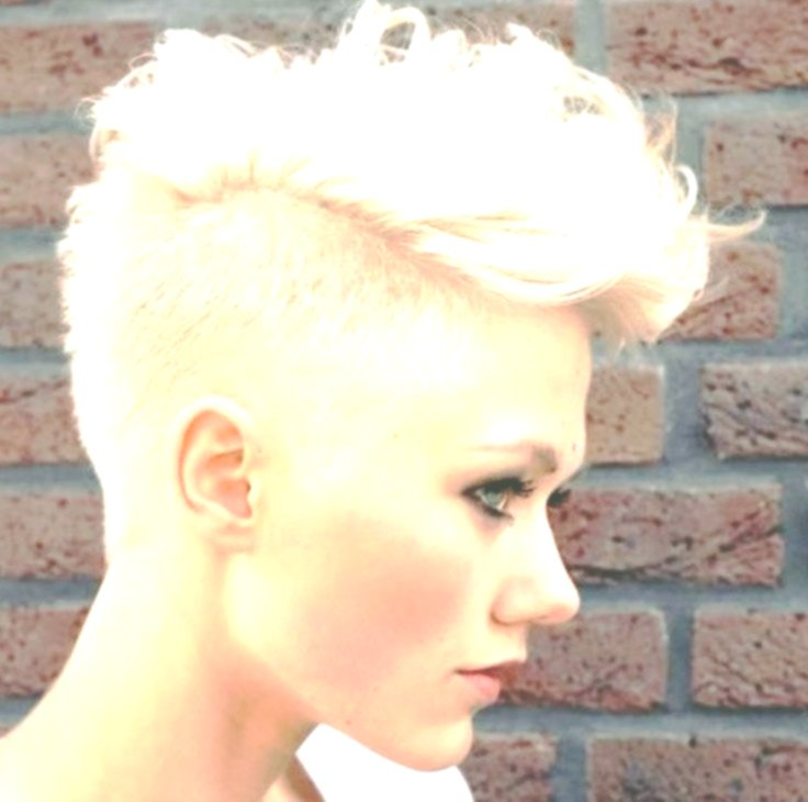 horribly cool fancy hairstyles décor-Best Of Fancy Short Hairstyles Layout