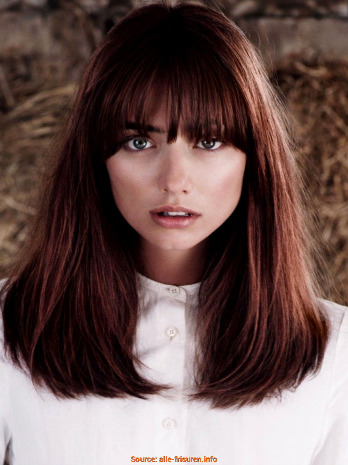 lovely bob hairstyles ladies design-fancy bob hairstyles ladies reviews