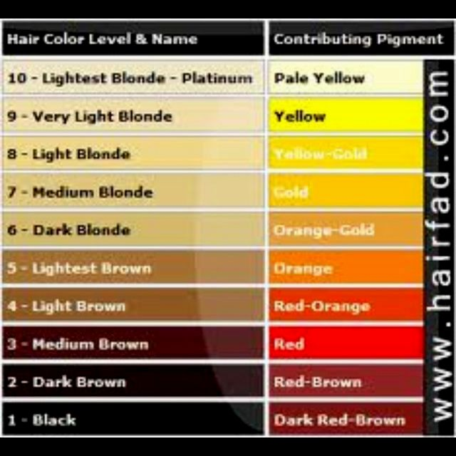 amazing awesome hair color golden brown ideas Amazing hair color golden brown concepts