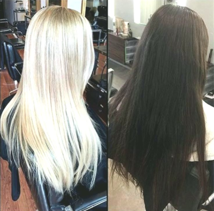 best of hair color white blonde concept-Excellent hair color white blonde reviews