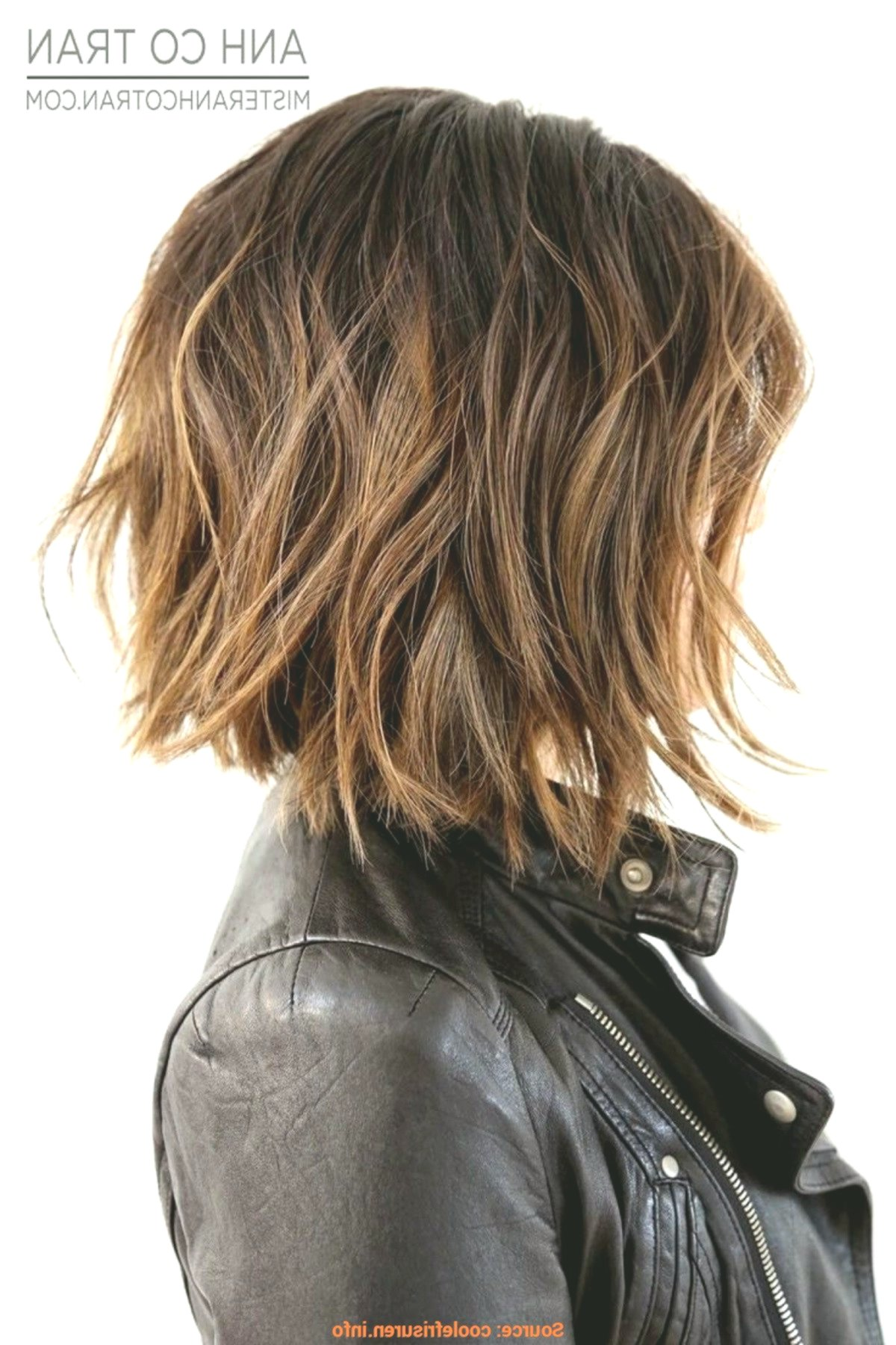 Inspirational Short Hairstyles With Glasses Concept-Modern Short Hairstyles With Glasses Decoration