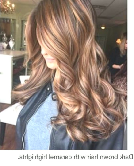 Outstanding The Best Hair Colors Online Luxury The Best Hair Colors Gallery