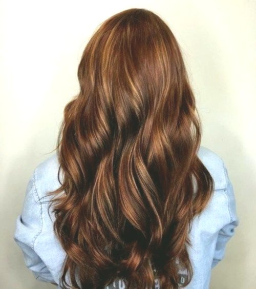 lovely brown tones hair color palette design best of shades of brown hair color palette photography
