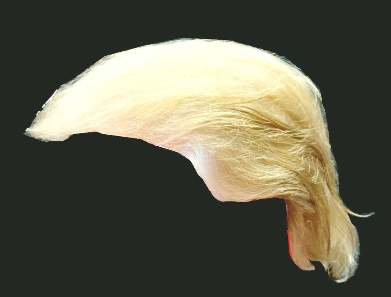 fascinating trump hairstyle photo-Cute Trump hairstyle concepts