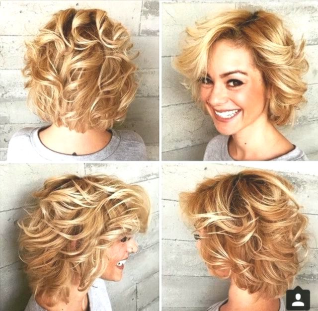 beautiful brittle hair collection-Inspirational brittle hair construction