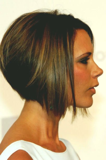 contemporary haircut stages construction layout-New haircut stages layout