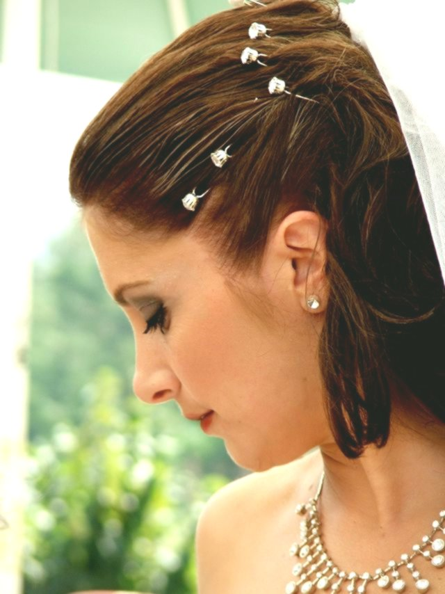 Excellent Hairstyle Bride Architecture - Awesome Hairstyle Bride Photo