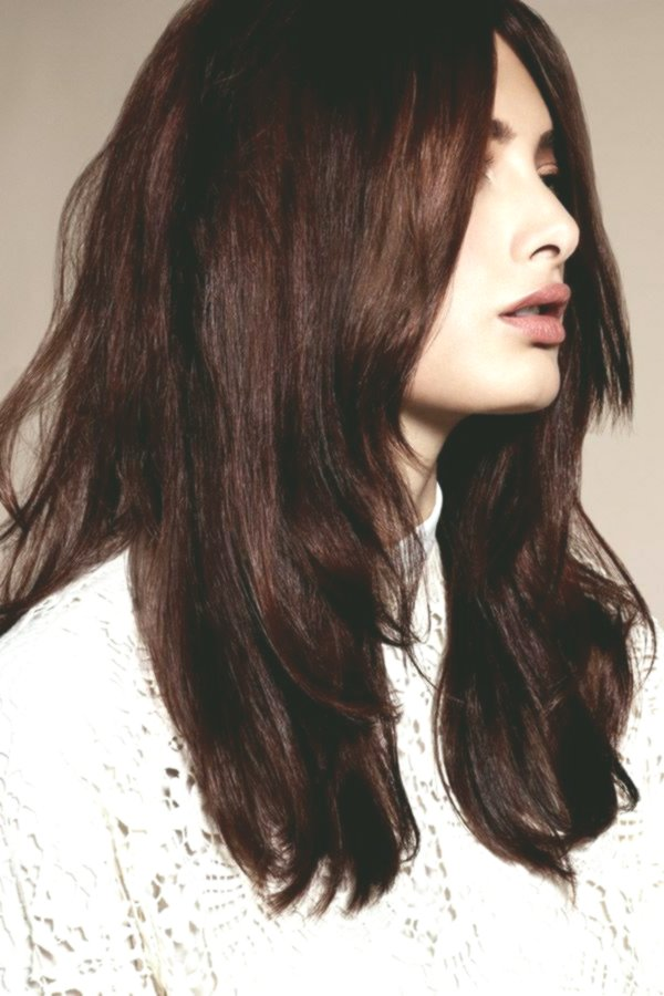 incredible brown tones hair color palette picture best of brown tones hair color palette photography