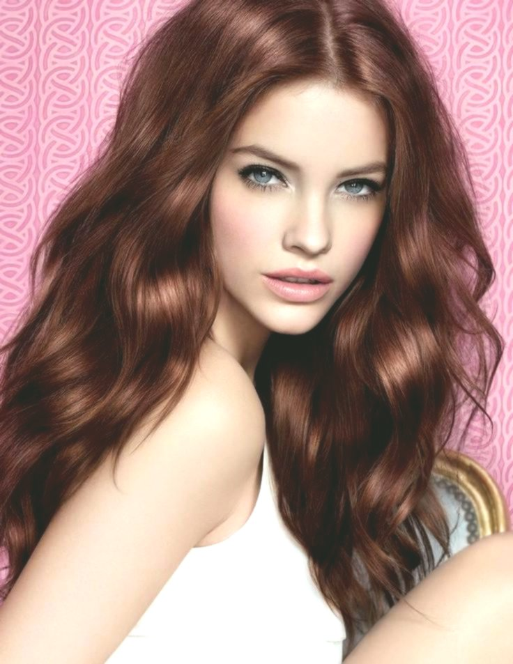 fresh brown tones hair color palette pattern Best Of brown tones hair color palette photography