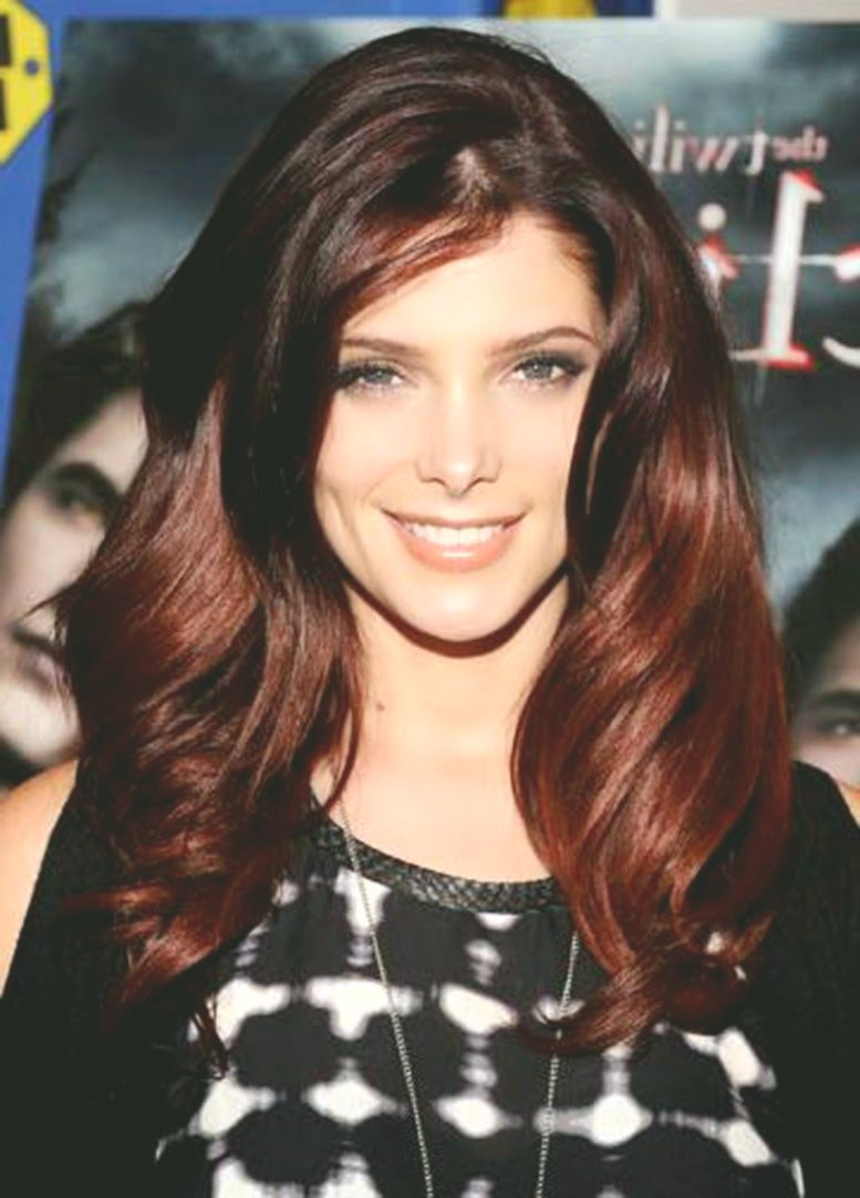 elegant brown hair color without reddish décor-modern brown hair color without reddish construction