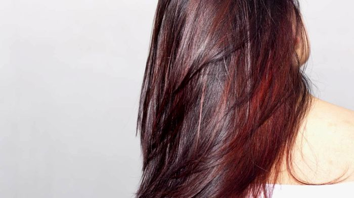 new hair lighter tones background-Incredible hair Bright tones decor