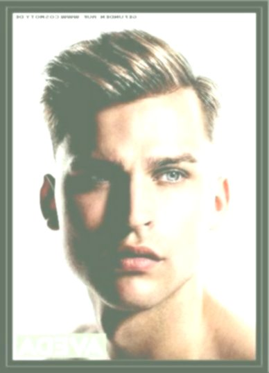 best hairstyles guys long decoration-Fantastic Hairstyles Guys Long Reviews
