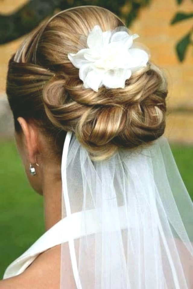 contemporary wedding hairstyles with veil Photo-Finest Wedding Hairstyles With Veil Design
