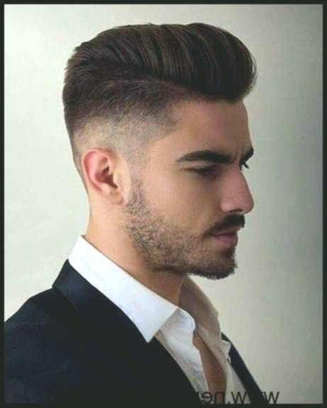 Latest Bald Hair Men's Background-Finest Bald Hair Men Photography