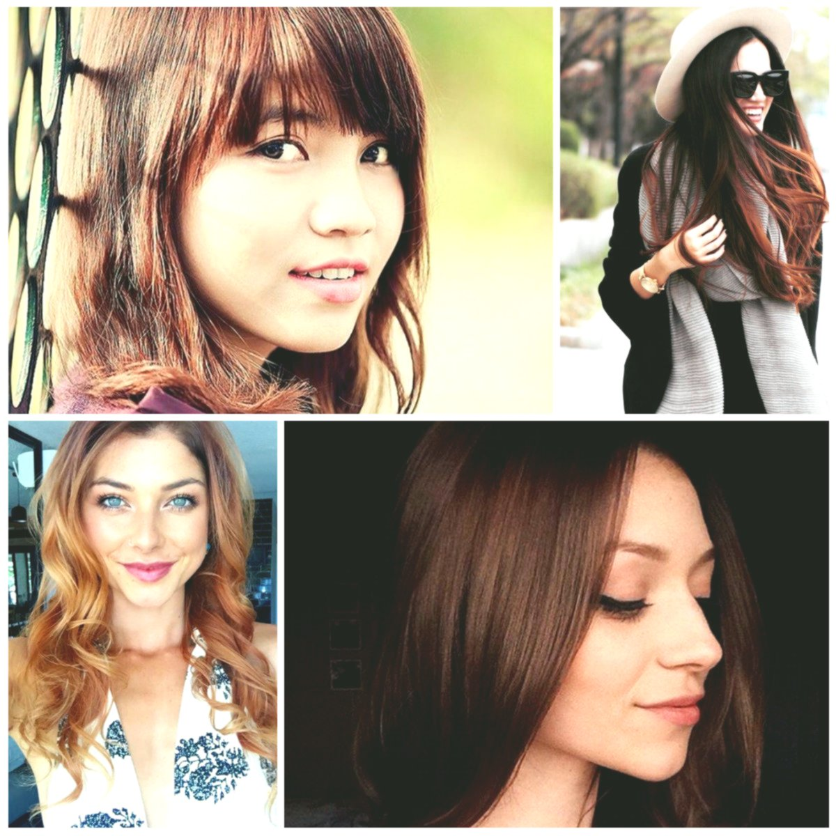 elegant hair color chestnut pattern-Beautiful hair color chestnut wall