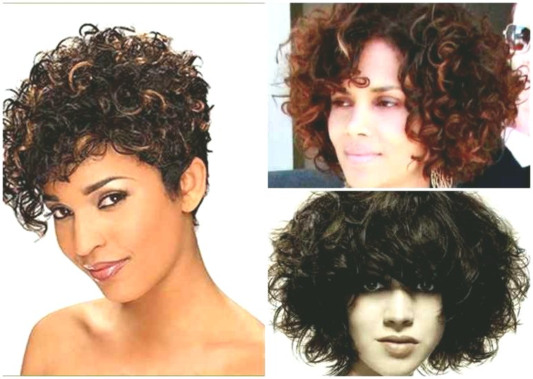 Amazing awesome hairstyles for curls collection-Best Of Hairstyles For Curls Layout