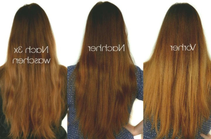 contemporary chestnut hair color online Awesome chestnut hair color model