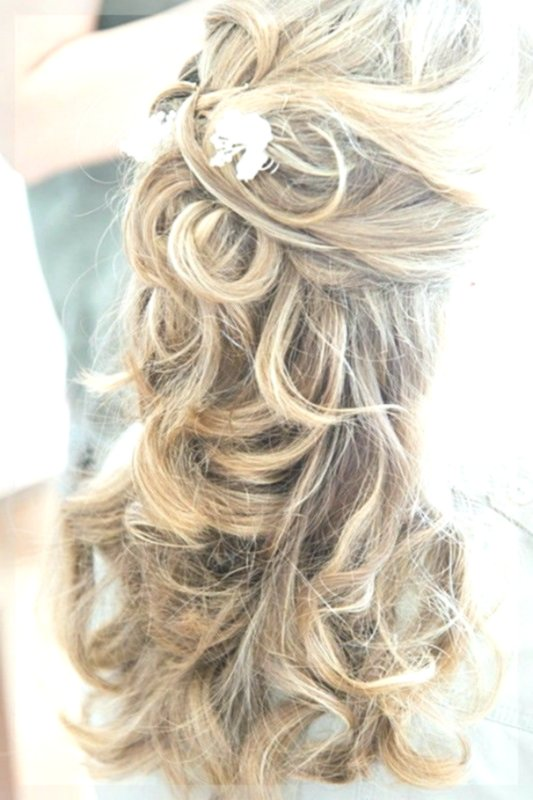 Stylish Hairstyles Long Hair Open Design Modern Hairstyles Long Hair Open Photo