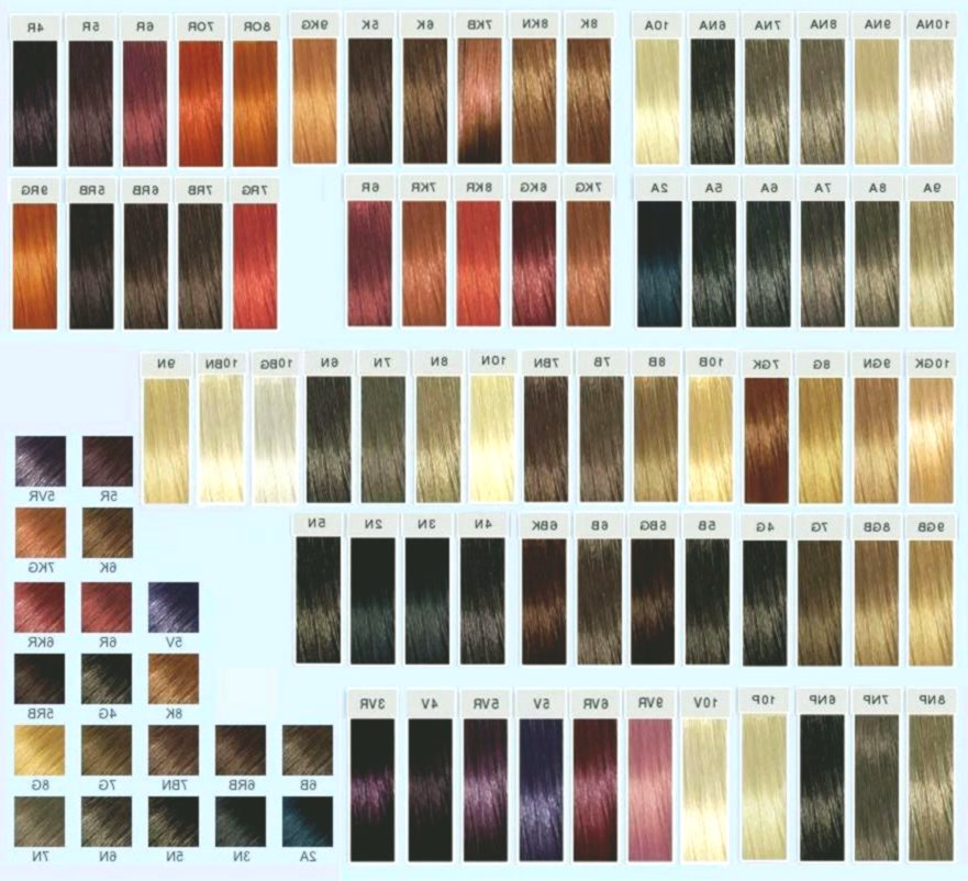 Lovely Palette Hair Color Pattern Modern Palette Hair Color Layout