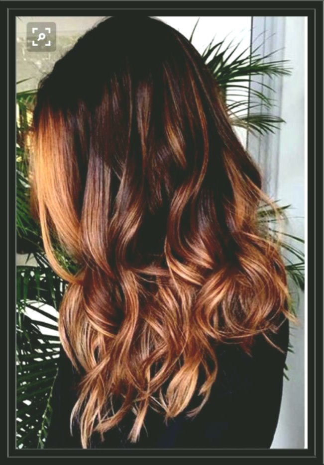 lovely hair color dark brown concept - beautiful hair color dark brown layout