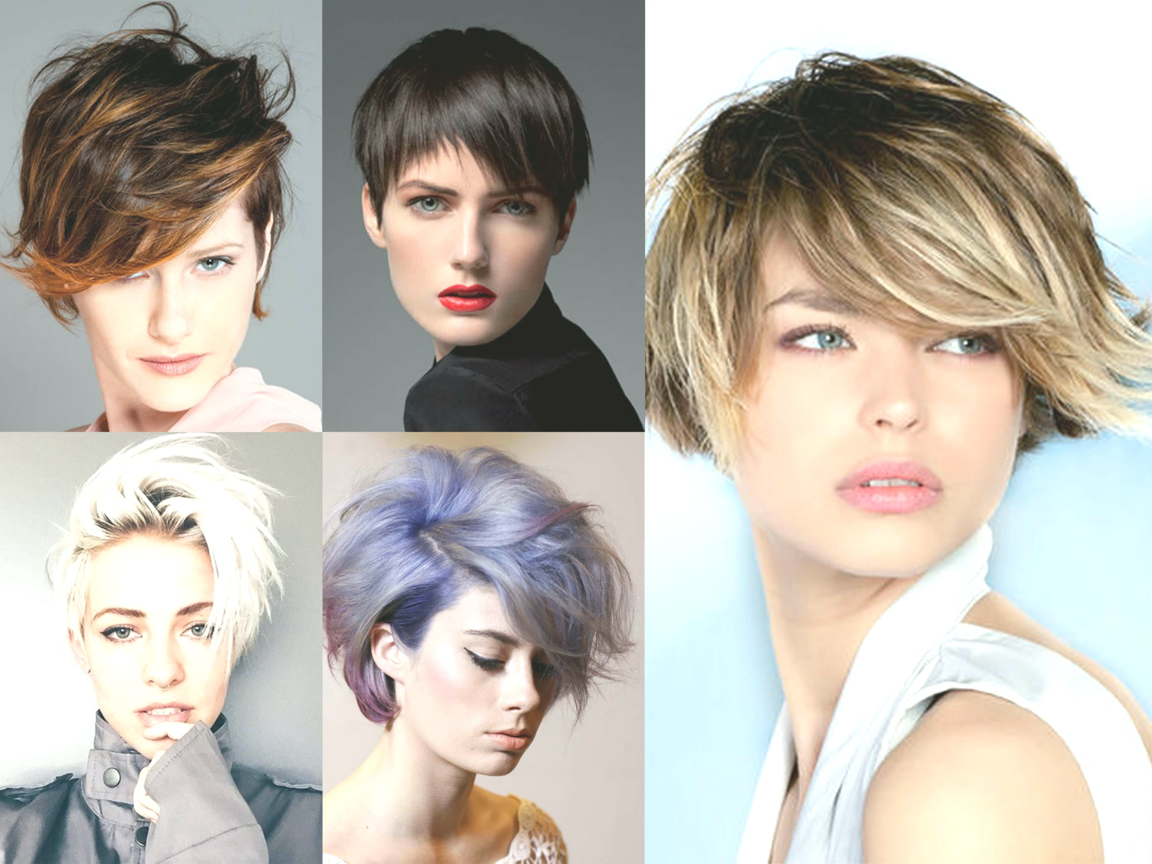 White hair color Portrait-Inspirational White hair color wall