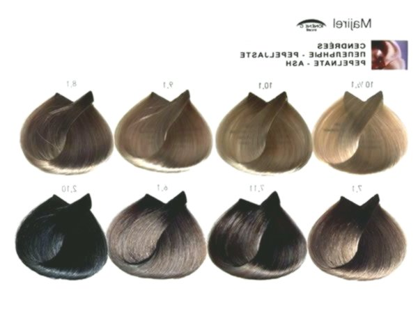 New Loreal Hair Color Blonde Build Layout - Fascinating Loreal Hair Color Blonde Model