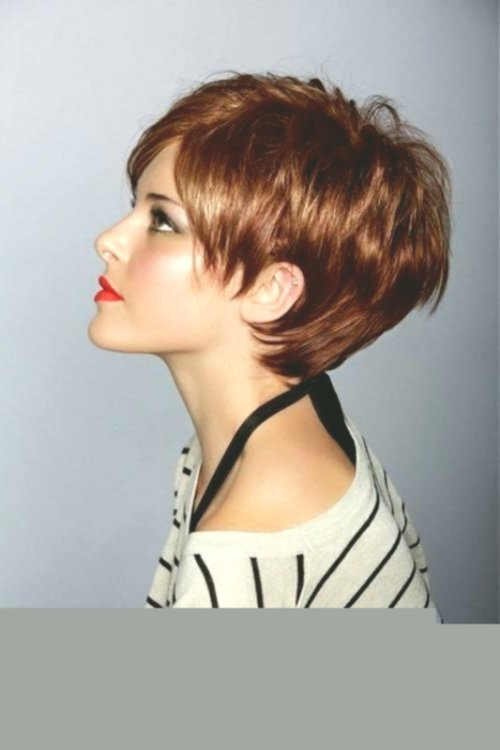 incredibly short-haired ladies plan-Best Short Hair Ladies Collection