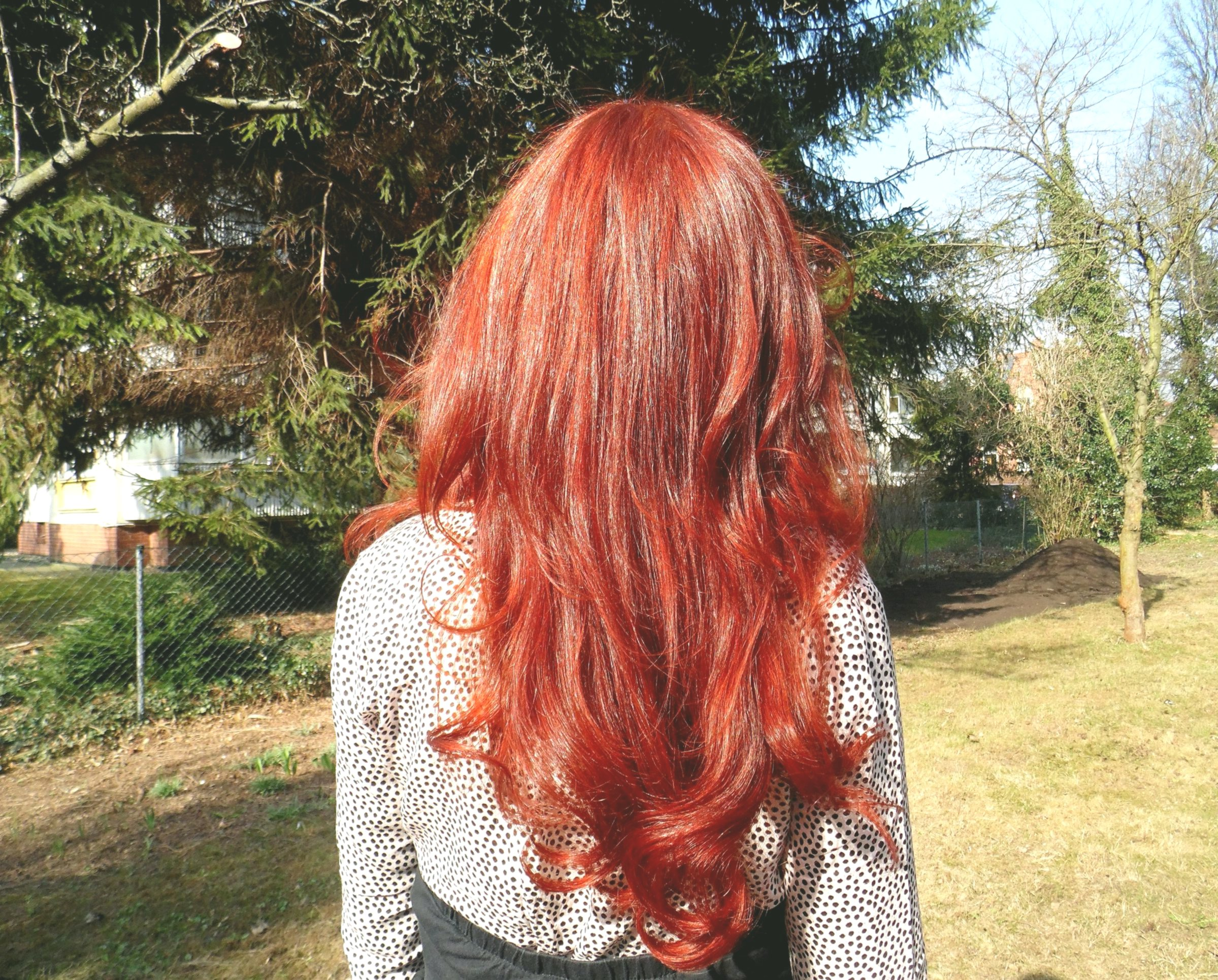 Stylish Hair Color Black Red Architecture-Breathtaking Hair Color Black Red Ideas