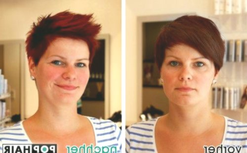 fresh hairstyles shorthair plan-superb hairstyles shorthair reviews