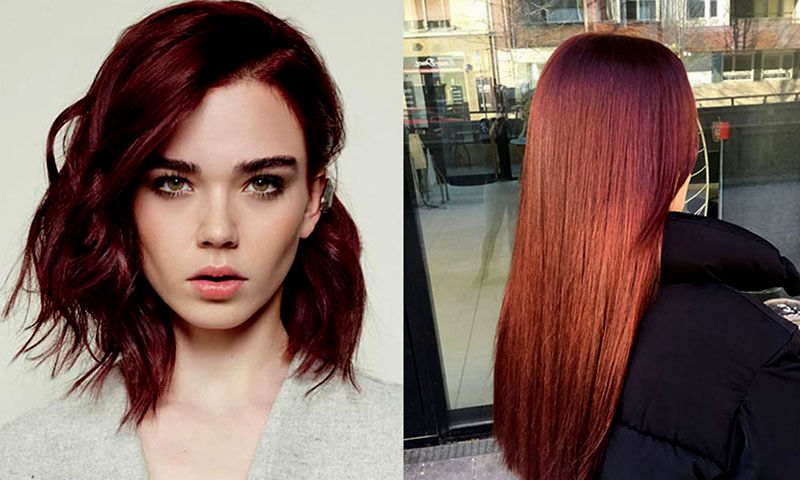 top hair color chocolate brown layout-Inspirational hair color chocolate brown reviews