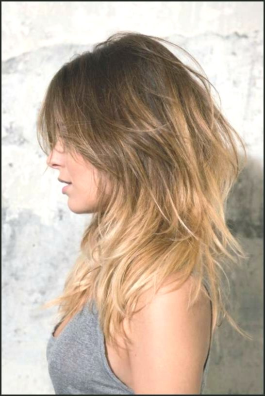 latest hairstyles longhair concept-Charming Hairstyles Longhair Models